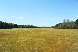 Large Acre Farm & Timber Tract - Columbus County NC