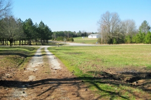 Mobley Hunting Homesite - Saluda County SC
