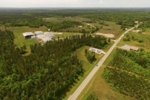 Butler Industrial and Timber Investment - Choctaw County AL