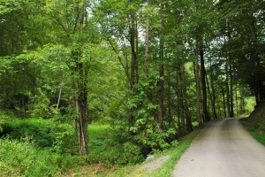 Pigeon Forge Commercial/Residential Development - Sevier County TN
