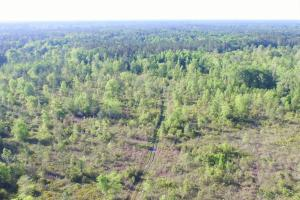 Private Hunting Tract - Glynn County GA