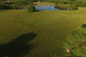 Windhaven Lakes Mini-Farm in Lowndes, AL (1 of 2)