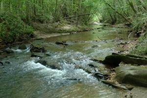 Paterson Creek Recreation & Timber - Elmore County AL