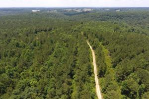Vinemont Timber Investment - Cullman County AL