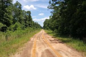 Photo 2 of 6  ·  2 of 6 Photos for Recreation & Timber Investment with Development Potential in San Jacinto County, TX