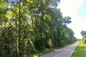 Crocketville Rural Lot - Hampton County SC