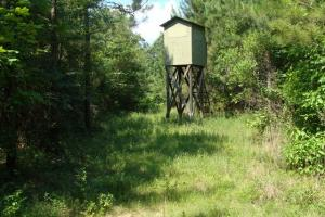 90+/- Acre Hunting & Timber Tract - Drew County AR