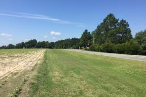 67.13 Acre Prime Residential Development  - Bulloch County GA