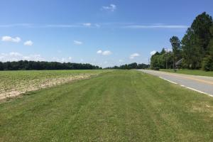 67.13 Acre Prime Residential Development  in Bulloch, GA (6 of 7)