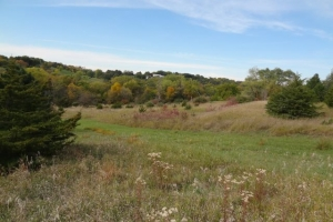 Spectacular Omaha Home Site with Stunning English Gardens in Douglas, NE (46 of 53)