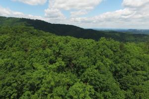 Gatlinburg Development Acreage - Sevier County TN