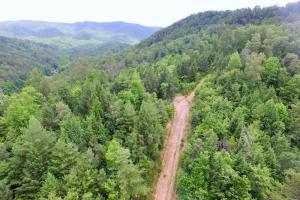 Photo 3 of 6  ·  3 of 6 Photos for Sevierville Mountain Acreage in Sevier County, TN