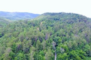 Photo 4 of 6  ·  4 of 6 Photos for Sevierville Mountain Acreage in Sevier County, TN