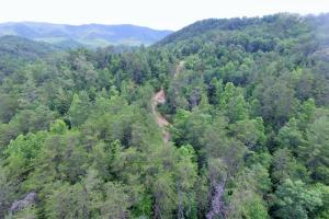 Photo 6 of 6  ·  6 of 6 Photos for Sevierville Mountain Acreage in Sevier County, TN