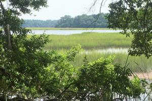 Knowles Island Plantation Deepwater Lot - Jasper County SC