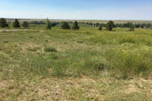Excellent Development Property For Sale - Lincoln County CO