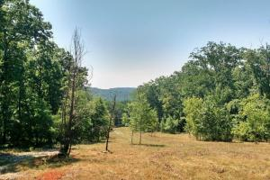 Mountain View Property with Wildlife - Habersham County GA
