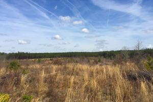 Upper Kershaw Homesite Investment - Kershaw County SC