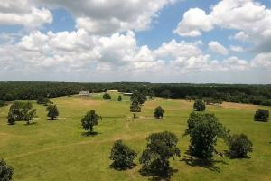 51 acre Texas Country Estate in Walker, TX (7 of 40)