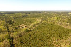 Sam Houston Forest Recreational/Development Tract