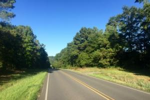 56 Acre Hunting Tract - Marion County GA
