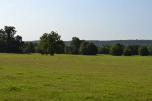 300+/- Acre Cattle & Hay Farm - Logan County AR