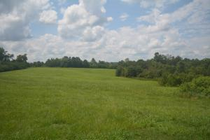 KC Ranch Home, Campground and Recreational Investment Tract in Winston, AL (6 of 48)