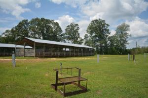 KC Ranch Home, Campground and Recreational Investment Tract in Winston, AL (26 of 48)