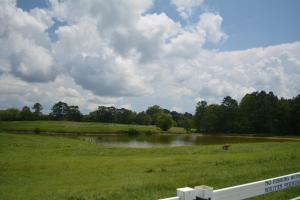 KC Ranch Home, Campground and Recreational Investment Tract in Winston, AL (5 of 48)