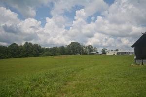 KC Ranch Home, Campground and Recreational Investment Tract in Winston, AL (41 of 48)