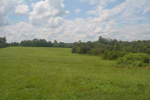 KC Ranch Home, Campground and Recreational Investment Tract in Winston, AL (43 of 48)