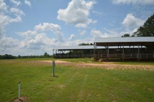 KC Ranch Home, Campground and Recreational Investment Tract in Winston, AL (27 of 48)