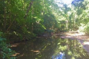 Hunting, Homesite, or Investment Tract in Muscogee, GA (11 of 14)