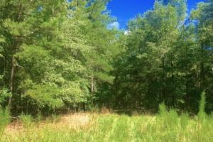 Hunting, Homesite, or Investment Tract in Muscogee, GA (14 of 14)