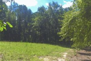 Hunting, Homesite, or Investment Tract in Muscogee, GA (9 of 14)