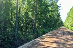 Waverly Homesite  - Camden County GA