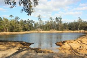 Recreational Getaway - Long County GA