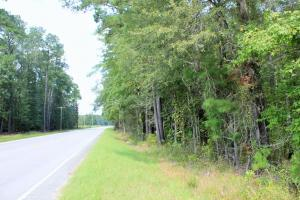 Country Estate or Mini Farm Tract - Orangeburg County SC