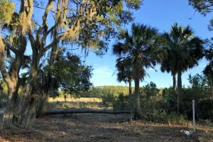 St. Helena Eddings Pt. Marsh/Waterfront Lot - Beaufort County SC
