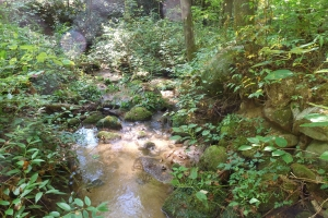 Mountain Recreation Property - Greenville County SC