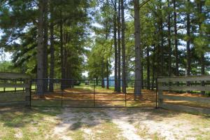 35 Acre Farm/Recreational Tract - Trinity County TX