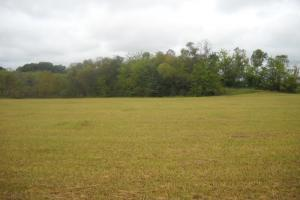 Windhaven Lakes 3.6 Homesite Lot - Lowndes County AL