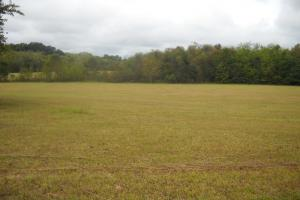 Windhaven Lakes Homesite Lot - Lowndes County AL