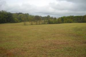 Windhaven Lakes 4 Acre Lot - Lowndes County AL