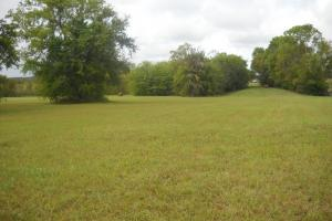Windhaven Lakes Development Homesite - Lowndes County AL