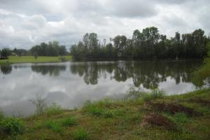 Windhaven Lakes Homesite Opportunity - Lowndes County AL
