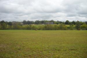 Windhaven Lakes 2.8 Acre Lot - Lowndes County AL