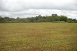 Windhaven Lakes 3 Acre Lot - Lowndes County AL