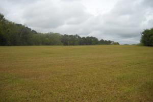 Windhaven Lakes 4.7 Acre Lot - Lowndes County AL