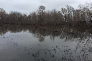 80+/- Acre Duck Hunting Farm near Cache River in Woodruff, AR (2 of 33)